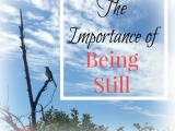 The Importance of BeingStill…